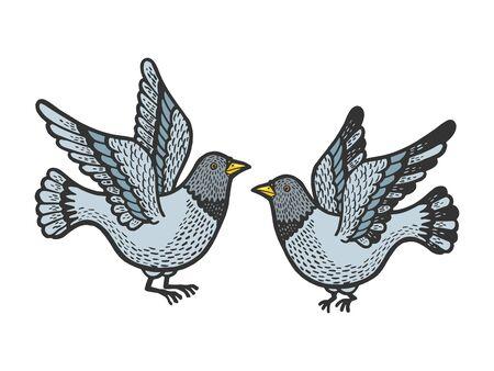 Dove pigeon birds tattoo color sketch engraving vector illustration.