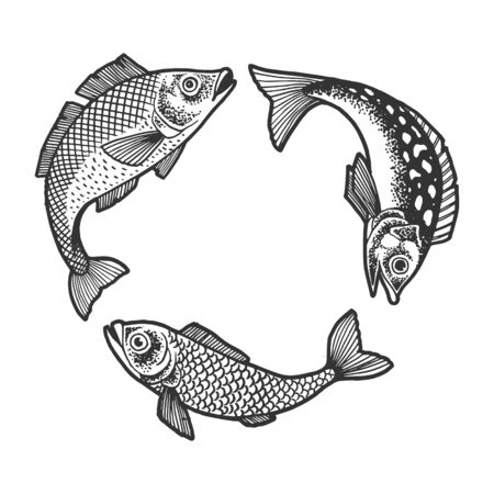 Three fish chasing each other and trying to eat swallow sketch engraving vector illustration.