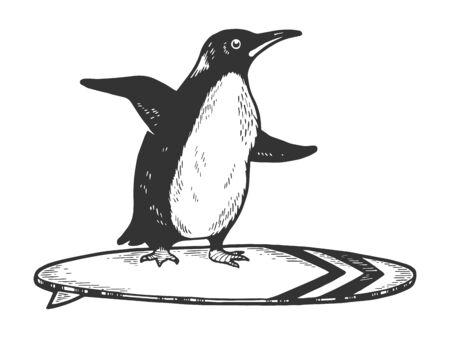 Penguin bird rides on surfboard sketch engraving vector illustration.