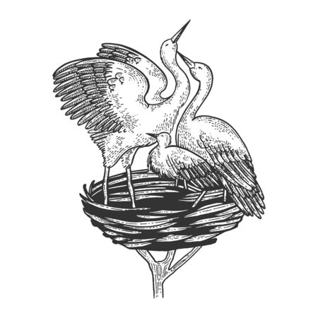 Stork crane in nest bird animal sketch engraving vector illustration. Scratch board style imitation. Black and white hand drawn image. Ilustração
