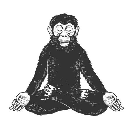 Chimpanzee monkey meditating in Lotus position sketch engraving vector illustration. Illustration