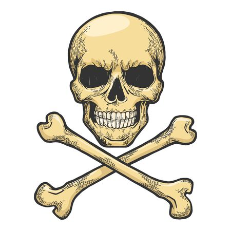 Skull with crossed bones. Pirate symbol Jolly Roger sketch engraving vector illustration. Tee shirt apparel print design. Scratch board style imitation. Hand drawn image.