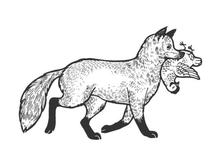 Fox with chicken in mouth sketch engraving vector illustration. Tee shirt apparel print design. Scratch board style imitation. Black and white hand drawn image.