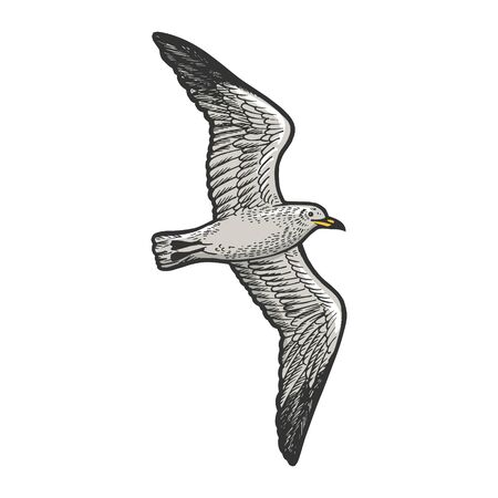 Seagull bird animal sketch engraving vector illustration. T-shirt apparel print design. Scratch board style imitation. Hand drawn image. Stock Illustratie