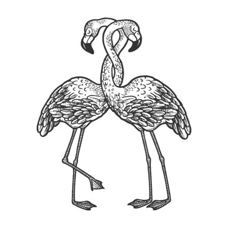 Flamingo birds love couple hug sketch engraving vector illustration. T-shirt apparel print design. Scratch board style imitation. Black and white hand drawn image. 向量圖像