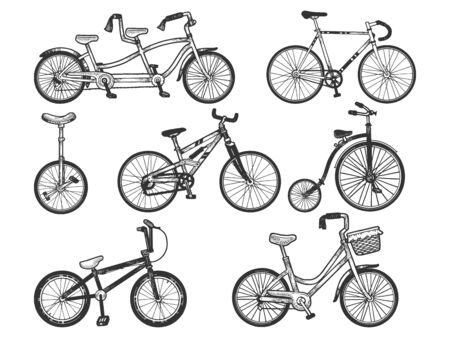 Bicycle set sketch engraving vector illustration. T-shirt apparel print design. Scratch board style imitation. Hand drawn image.