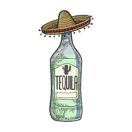 Tequila in mexican sombrero hat sketch engraving vector illustration. T-shirt apparel print design. Scratch board style imitation. Black and white hand drawn image. Vector Illustration