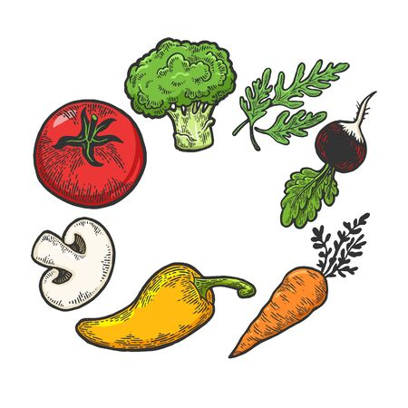 Vegetables vegan food sketch engraving vector illustration. T-shirt apparel print design. Scratch board style imitation. Black and white hand drawn image.