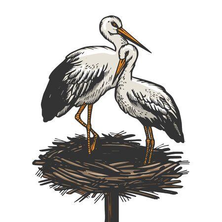 Stork in nest bird animal sketch engraving vector illustration. T-shirt apparel print design. Scratch board imitation. Black and white hand drawn image. Vektoros illusztráció
