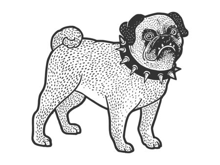 Angry evil pug pet dog in spiked collar sketch engraving vector illustration. T-shirt apparel print design. Scratch board style imitation. Hand drawn image. Иллюстрация