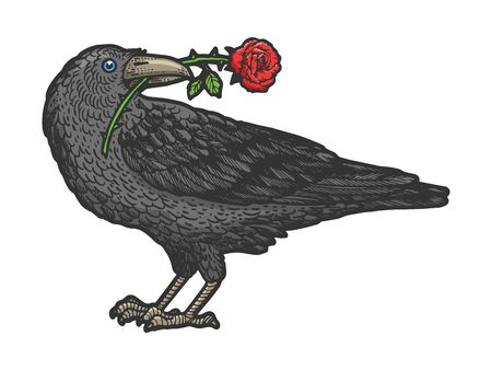 Raven bird with rose flower in its beak sketch engraving vector illustration. T-shirt apparel print design. Scratch board style imitation. Hand drawn image.