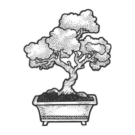 Bonsai japanese tree sketch vector illustration. Scratch board style imitation. Hand drawn image.