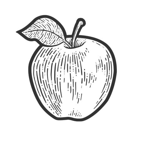 Apple fruit sketch engraving vector illustration. T-shirt apparel print design. Scratch board imitation. Black and white hand drawn image. Banque d'images - 139413605