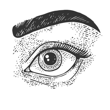 Beauty woman eye sketch engraving vector illustration. T-shirt apparel print design. Scratch board imitation. Black and white hand drawn image. Иллюстрация