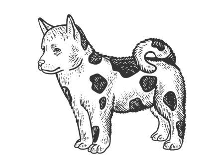 Dog puppy animal sketch engraving vector illustration. T-shirt apparel print design. Scratch board imitation. Black and white hand drawn image. Иллюстрация