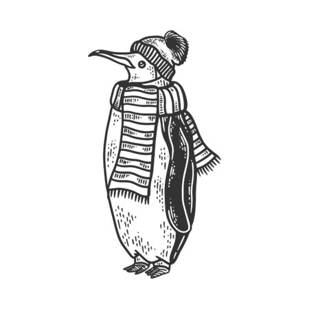 Penguin bird neck is wrapped in scarf and winter hat sketch engraving vector illustration. T-shirt apparel print design. Scratch board imitation. Black and white hand drawn image.