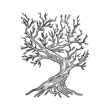 tree without leaves sketch engraving vector illustration. T-shirt apparel print design. Scratch board imitation. Black and white hand drawn image.