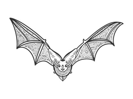 chauve-souris volante croquis gravure illustration vectorielle. Conception d'impression de vêtements de T-shirt. Imitation de planche à gratter. Image dessinée à la main en noir et blanc. Vecteurs