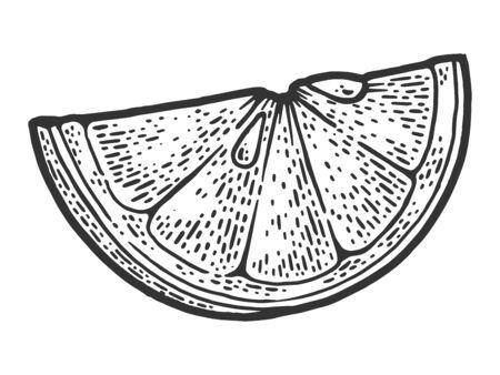 slice of lemon sketch engraving vector illustration. T-shirt apparel print design. Scratch board imitation. Black and white hand drawn image. 向量圖像