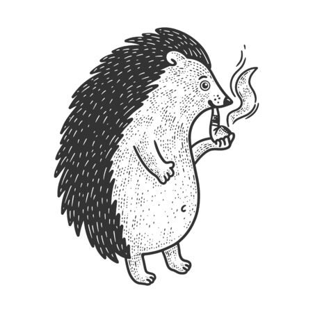 hedgehog with smoking pipe sketch engraving vector illustration. T-shirt apparel print design. Scratch board imitation. Black and white hand drawn image.  イラスト・ベクター素材