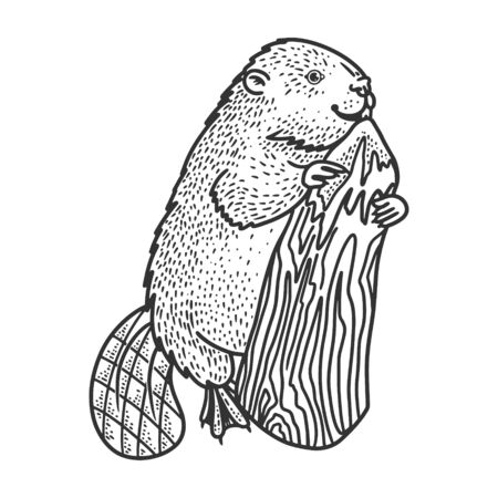 beaver and tree sketch engraving vector illustration. T-shirt apparel print design. Scratch board imitation. Black and white hand drawn image.