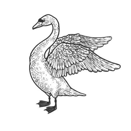 Swan with spread wings sketch engraving vector illustration. T-shirt apparel print design. Scratch board imitation. Black and white hand drawn image. Ilustración de vector