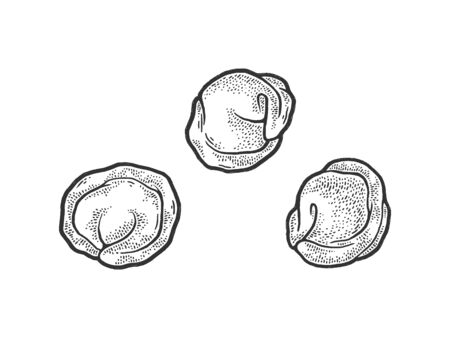 dumplings sketch engraving vector illustration. T-shirt apparel print design. Scratch board imitation. Black and white hand drawn image.