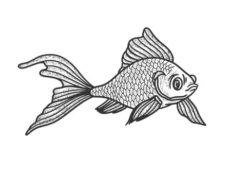 Goldfish aquarium fish sketch engraving vector illustration. T-shirt apparel print design. Scratch board imitation. Black and white hand drawn image.