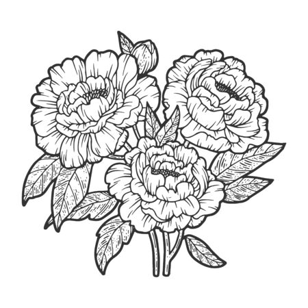 peony flower sketch engraving vector illustration. T-shirt apparel print design. Scratch board imitation. Black and white hand drawn image.