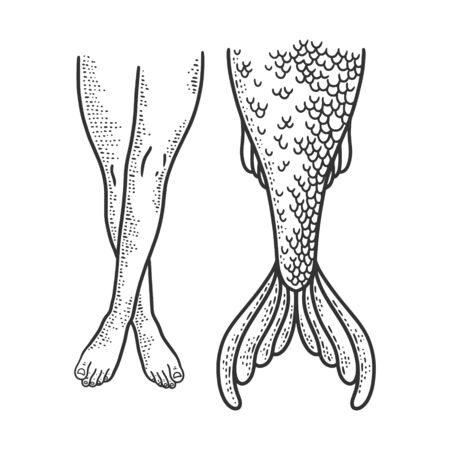 Woman legs and mermaid tail sketch engraving vector illustration. T-shirt apparel print design. Scratch board imitation. Black and white hand drawn image. Çizim