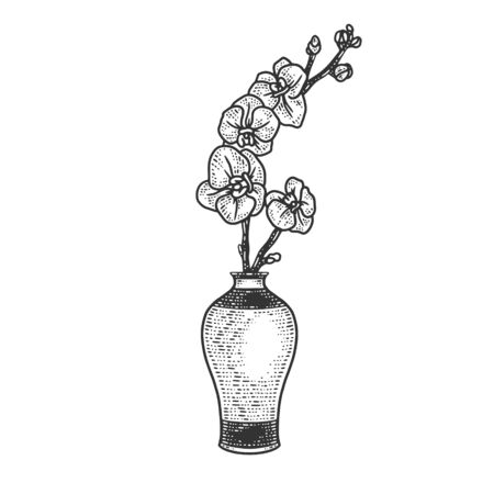 orchid in vase sketch engraving vector illustration. T-shirt apparel print design. Scratch board imitation. Black and white hand drawn image.