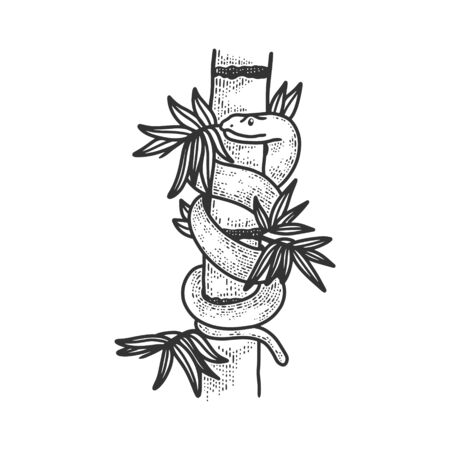 snake in bamboo thickets sketch engraving vector illustration. T-shirt apparel print design. Scratch board imitation. Black and white hand drawn image. 일러스트