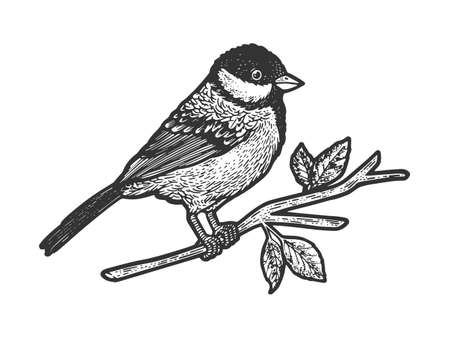 titmouse great tit bird on tree branch sketch engraving vector illustration. T-shirt apparel print design. Scratch board imitation. Black and white hand drawn image.