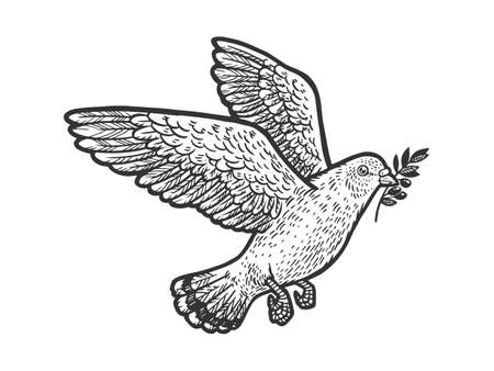 dove with olive sprig branch sketch engraving vector illustration. T-shirt apparel print design. Scratch board imitation. Black and white hand drawn image.