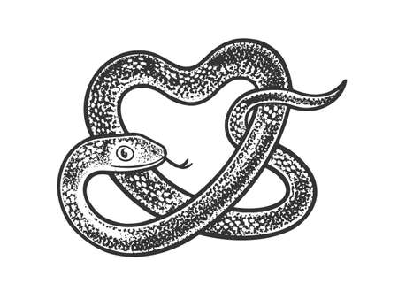 snake in form of heart symbol sketch engraving vector illustration. T-shirt apparel print design. Scratch board imitation. Black and white hand drawn image.
