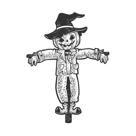 halloween pumpkin scarecrow sketch engraving vector illustration. T-shirt apparel print design. Scratch board imitation. Black and white hand drawn image.
