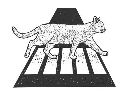 Cat crosses the road at pedestrian crossing sketch engraving vector illustration. T-shirt apparel print design. Scratch board imitation. Black and white hand drawn image.