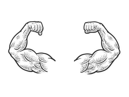 Muscular hands arms of strong man bodybuilder sketch engraving vector illustration. T-shirt apparel print design. Scratch board imitation. Black and white hand drawn image. 向量圖像