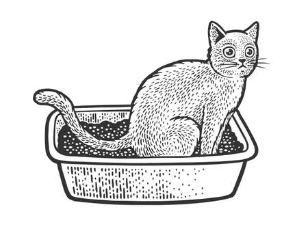 cat sit on cat litter box sketch engraving vector illustration. T-shirt apparel print design. Scratch board imitation. Black and white hand drawn image.