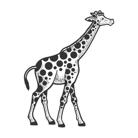 Giraffe animal with circles spots sketch engraving vector illustration. T-shirt apparel print design. Scratch board imitation. Black and white hand drawn image.