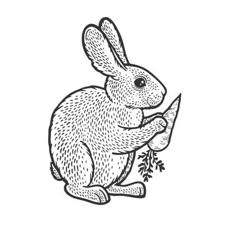 rabbit hare bunny with carrot sketch engraving vector illustration. T-shirt apparel print design. Scratch board imitation. Black and white hand drawn image. 向量圖像