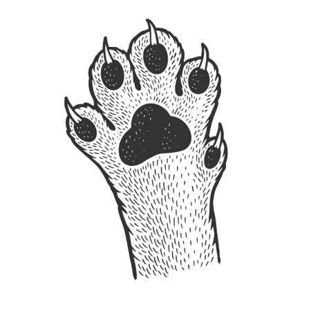 cat paw sketch engraving vector illustration. T-shirt apparel print design. Scratch board imitation. Black and white hand drawn image.