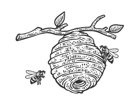 Hive of wild bees on a tree sketch engraving vector illustration. T-shirt apparel print design. Scratch board imitation. Black and white hand drawn image. 向量圖像