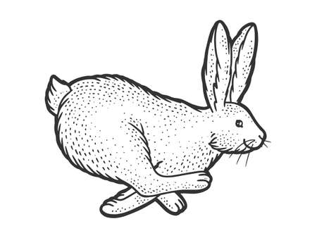 running rabbit sketch engraving vector illustration. T-shirt apparel print design. Scratch board imitation. Black and white hand drawn image. 向量圖像