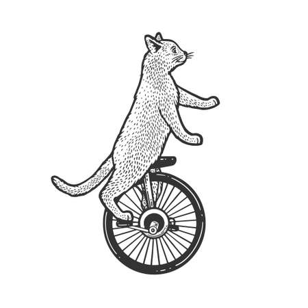 unicycle cartoon circus cat sketch engraving vector illustration. T-shirt apparel print design. Scratch board imitation. Black and white hand drawn image. 向量圖像