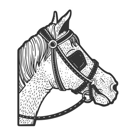 Blinkers horse tack on horse eyes sketch engraving vector illustration. T-shirt apparel print design. Scratch board imitation. Black and white hand drawn image.
