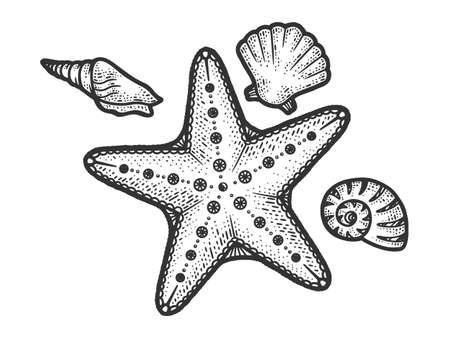 starfish and seashells line art sketch engraving vector illustration. T-shirt apparel print design. Scratch board imitation. Black and white hand drawn image.