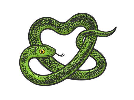 snake in form of heart symbol color line art sketch engraving vector illustration. T-shirt apparel print design. Scratch board imitation. Black and white hand drawn image. Vektorové ilustrace