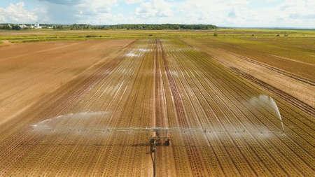 Aerial view: Crop Irrigation using the center pivot sprinkler system. An irrigation pivot watering salad, lettuce field. Irrigation system watering farm field.
