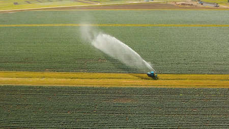 Aerial view: Irrigation equipment watering cabbage field. Irrigation system watering farm field. Foto de archivo
